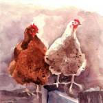 Linkshandige kippen (..)