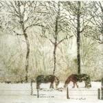 Ponies in de sneeuw (..)